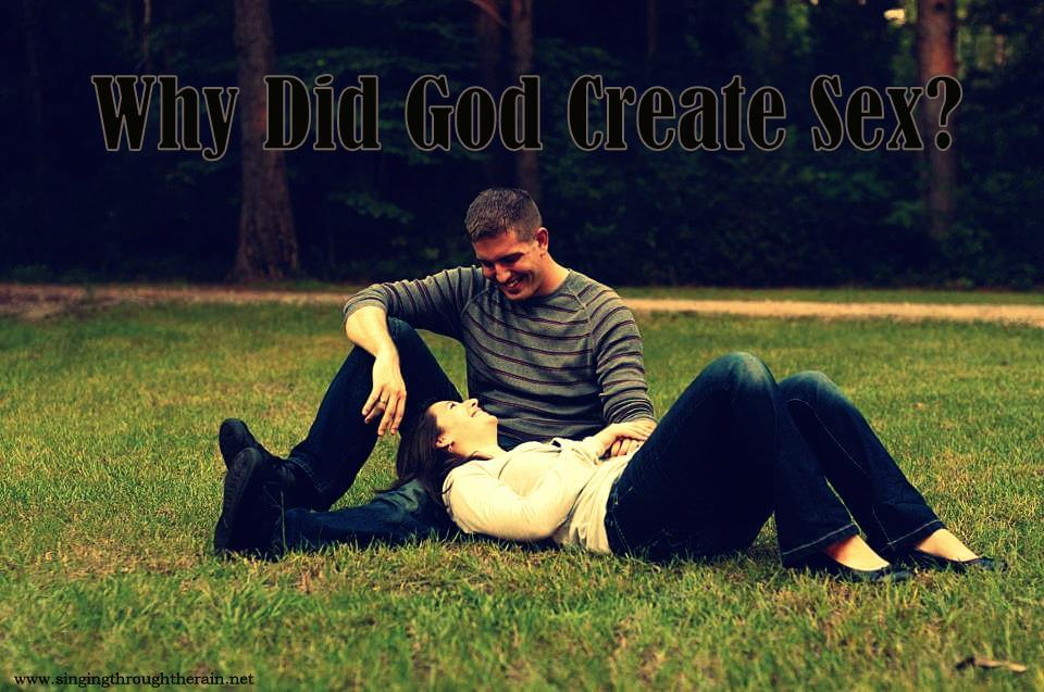 Why Did God Create Sex