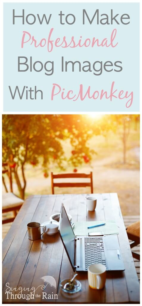 How to Create Professional Images on PicMonkey