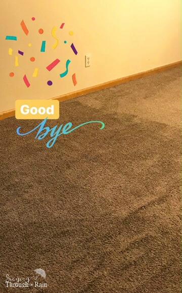 Hypoallergenic Options to Carpet